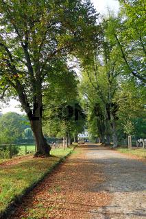 gutshof, landleben in Hamburg-Wohldorf-Ohlstedt,