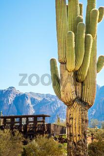 Apache Trail Arizona