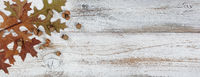 Autumn acorns and leaves with branches on rustic white wood background