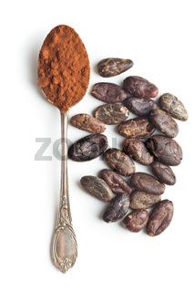 Cocoa powder and beans in spoon.
