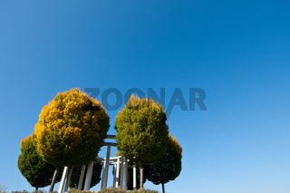 Bäume im Herbst und blauer Himmel