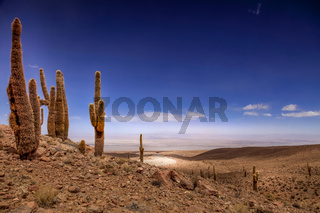 Amphitheater, valle de la Luna, Valley of the Moon, west of San Pedro, Atacama desert of Chile