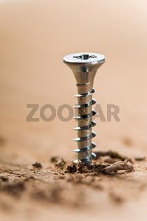 Schraube und Holz