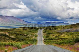 Denali highway