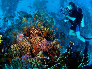 Unterwasser-Fotograf