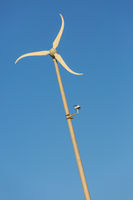 Low angle view of single windmill