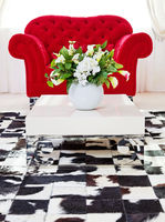 Red classical armchair in living interior