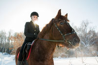 Young beautiful girl jockey riding a horse in winter forest