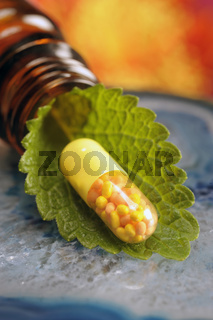 alternative medicine with herbal pill of medicinal plant