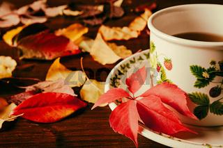 Closeup of a cup of tea