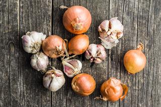 Fresh onion and garlic bulbs.