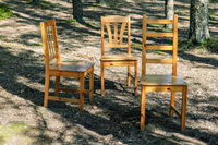 Three chairs in the woods.
