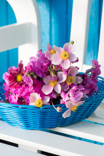 Sommerblumen in blauem Korb
