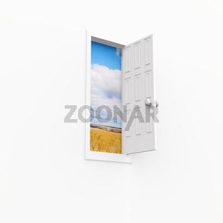 open door. 3d on white