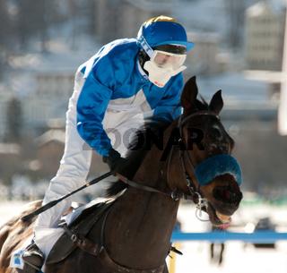Jockey mit Pferd