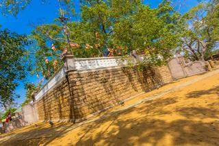 Anuradhapura Jaya Sri Maha Bodhi Tree Corner