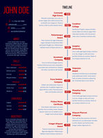 Modern cv resume with detailed timeline