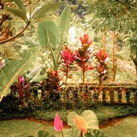 Surreal colors of fantasy tropical garden