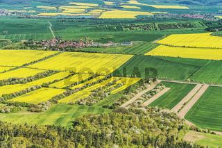 Landwirtschaft | Agriculture