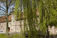 Wasserschloss Raesfeld - Trauerweide