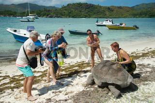 Touristen mit Riesenschildkröte auf den Seychellen
