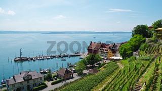 Aussicht auf den Hafen - Meersburg