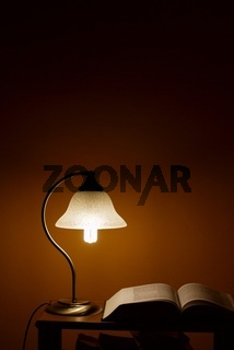 Small lamp illuminating a book in the night