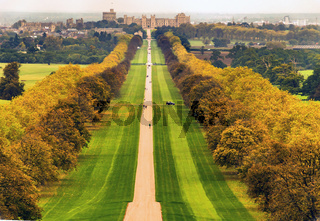 Windsor Great Park - The Long Walk