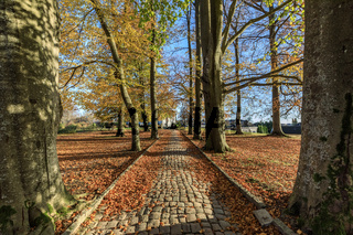 Old road of cobblestone in the botanical garden at Gimle Gaard, in Kristiansand, Norway