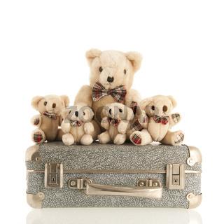 Vintage bears on suitcase