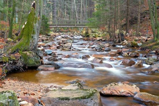 der Fluss Ilse im Nationalpark Harz
