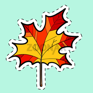 Autumn maple leaf, nature seasons. label sticker