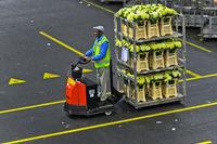 Kleinsttransporter ziehen Wagen mit versandfertigen Pflanzen und Blumen,Royal FloraHolland, Aalsmeer