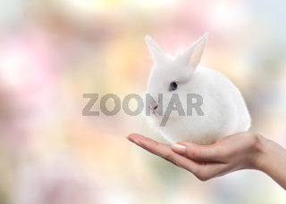 Easter rabbit on woman's hand