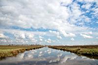 Field in Zaanse Schans, Holland