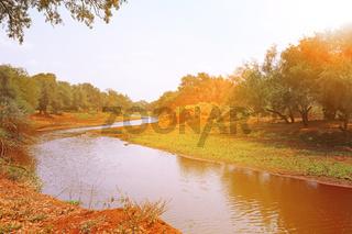 Landschaft im Norden des Kruger Nationalparks Südafrika; landscape at the north of Kruger NP, South Africa
