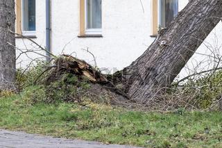Sturmtief Friederike