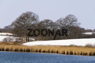 Winterlandschaft am Ornumer Noor