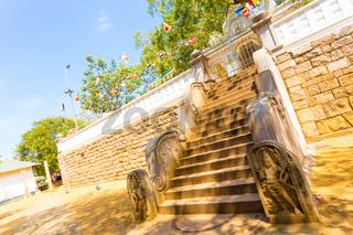 Anuradhapura Jaya Sri Maha Bodhi Tree Sky Angled