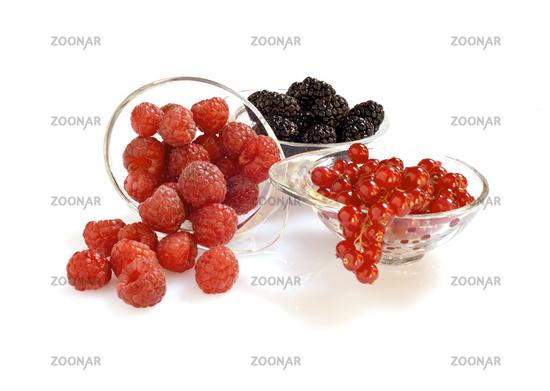 Raspberries, blackberries and currants