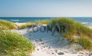 Dünen am Sandstrand