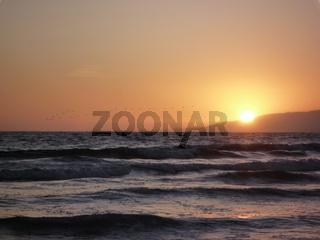 Voegel ueber dem Pazifik beim Sonnenuntergang