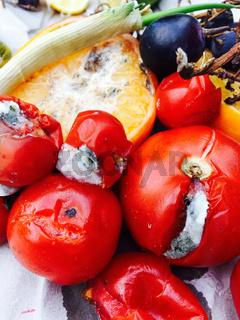 Verschimmelte Tomaten und Obst