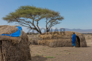 Massai Hütte im Ngorongoro-Krater, Schutzgebiet