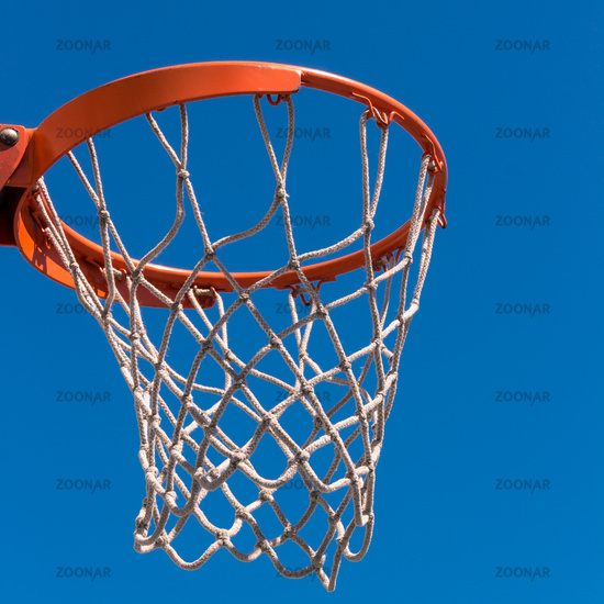 The hoop basketball