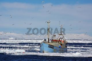 Fischerboot im Packeis
