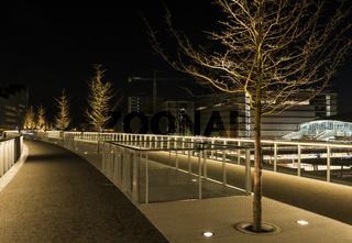 Moreelsebrug at Night Utrecht