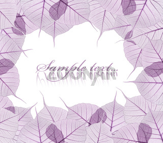 violet leaves isolated on white background