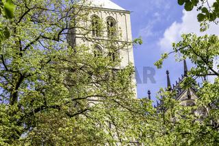 Südturm des St. Paulus-Doms