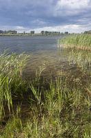 Teich in Brandenburg, Linum